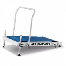 Аквадорожка Aquaness T1